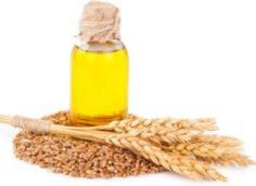 Масло зародышей пшеницы для волос: применение масок