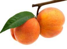 Персиковое масло для волос: применение масок