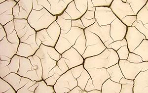 Сухая кожа лица и тела: причины и лечение в домашних условиях