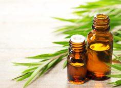Может ли масло чайного дерева лечить келоидные рубцы?
